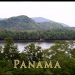 実録サバイバル!「パナマジャングルから脱出 前編」ベア・グリルス